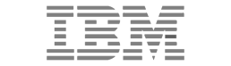 IBM Computing and Professional Services Search Firm