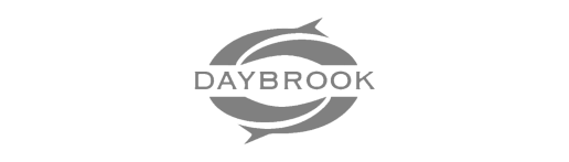 Daybrook Retained Search for a President