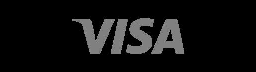 Visa Financial Services Executive Recruiting